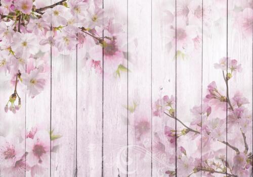 Vließ Fototapete Tapete Wandbild Kirschblüten auf den Brettern MS0911468/_VENMVT