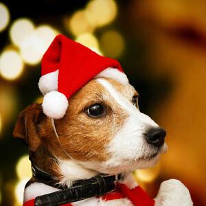 Navidad mascota Santa Hat pequeño cachorro gato perro de vacaciones traje