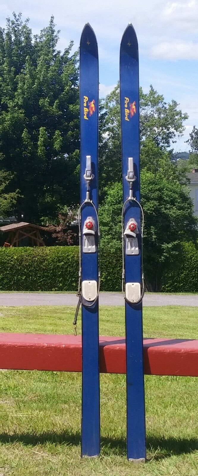 GREAT WOODEN Skis 'Fire Bird' blueE 64  Snow Skiis L@@K
