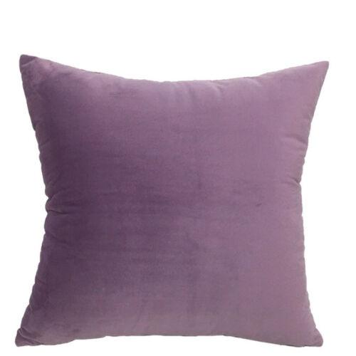 Soft Velvet Pillow with Core Sofa Cushions Nap Pillows Children Home Modern Chic