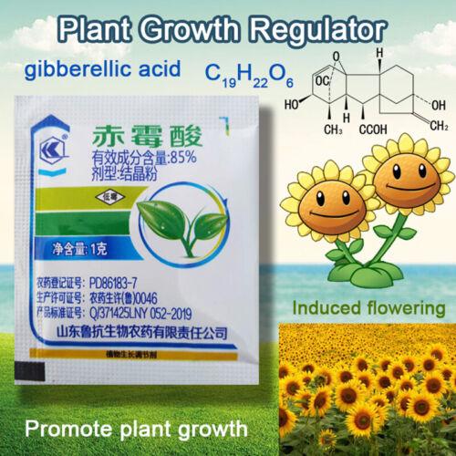 1g Konzentrat Gibberellinsäure Pflanzenwachstumsregulator Dünger Erhöhen Wa Bs