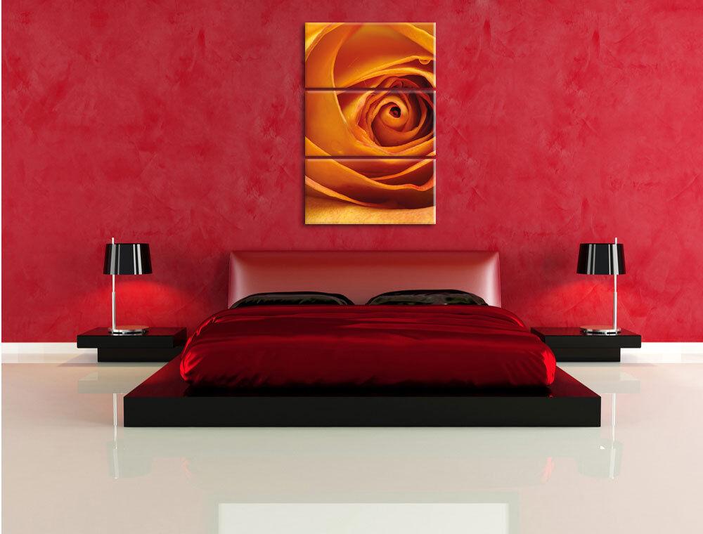 Elegante Amarilla en Cerrado Rosa 3-Teiler Foto en Amarilla Lienzo Decoración de Pa rojo  d7a90a