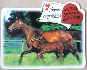 Chevaux Poulains Mini Poster Cartonne Tres Bon Etat Joyeux Anniversaire Ebay