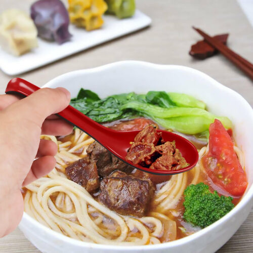 6Pcs Porridge Soup Ramen Spoons with Long Handle  Flatware Utensils Restaurants