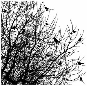 Bird-Tree-Cover-A-Card-Background-Cling-Rubber-Stamp-Impression-Obsession-CC102
