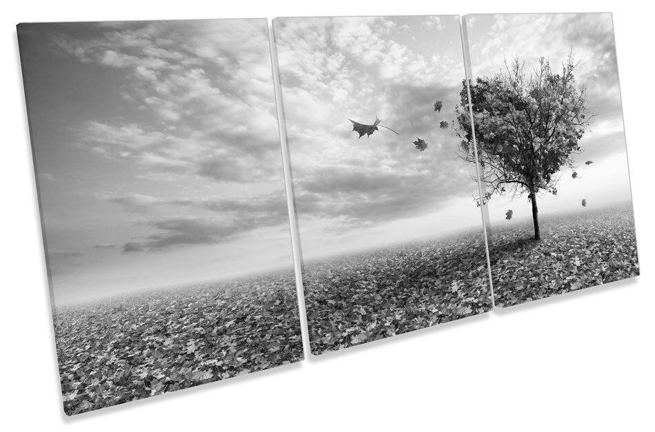 ALBERO AUTUNNO TRAMONTO Amore Cuore B&W B&W B&W triplicare CANVAS WALL ART PICTURE PRINT 13b420