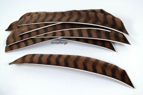 12 Stück Bearpaw Volle Länge Barred Braun Federn RW Truthahnfedern Naturfedern