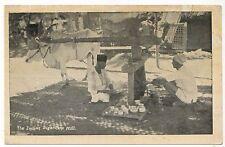 INDIA PC Postcard MUMBAI Asia ASIAN Indian Sugercane Mill MAHARASHTRA Sugar