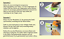 Spruch-WANDTATTOO-Um-fliegen-zu-koennen-loslassen-Wandsticker-Aufkleber-Sticker Indexbild 10