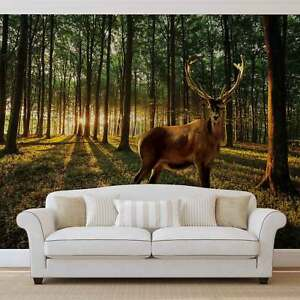 Image Is Loading WALL MURAL PHOTO WALLPAPER XXL Deer Forest Trees  Part 87