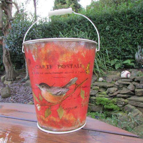 CARTE POSTALE TIN PAIL BUCKETS BEAUTIFUL RED BIRD VINTAGE DISPLAY GARDEN KITCHEN