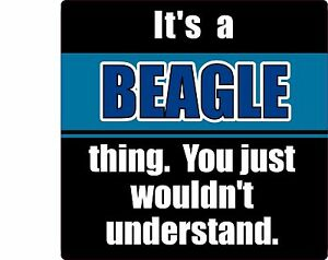 034-IT-039-S-A-BEAGLE-THING-YOU-JUST-WOULDN-039-T-UNDERSTAND-034-DOG-4-034-STICKER