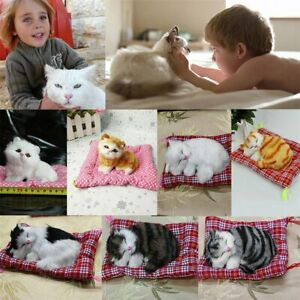 Mini-Lovely-Simulation-Animal-Doll-Plush-Sleeping-Cats-with-Sound-Kids-Toy-PD