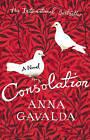 Consolation by Anna Gavalda (Paperback, 2010)