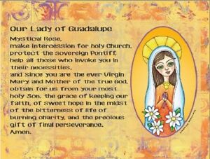 Our-Lady-of-Guadalupe-Mystical-Rose-Virgin-Mary-Postcard