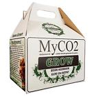 Fungivore 749405 Mushroom Bag Grow