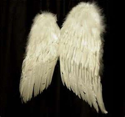 Angel Wings Type Fragrance Oil Candle/Soap Making Supplies ***Free Shipping***