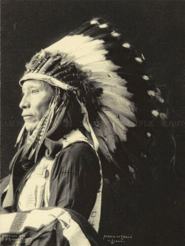 PHOTO BLACK WHITE 1898 INDIAN CONGRESS AFRAID EAGLE SIOUX NATIVE PRINT LV3610