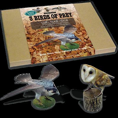 Three Dimensional Card Birds Flights of Fancy Card Birds of Prey