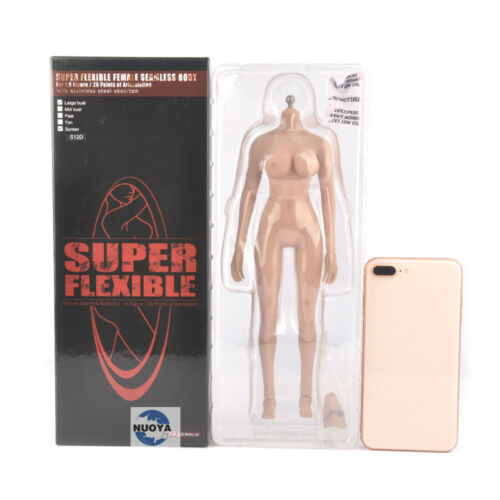 """12/"""" Female Big Body Stainless Skeleton 1//6 Phicen TBLeague S12D Action Figure"""