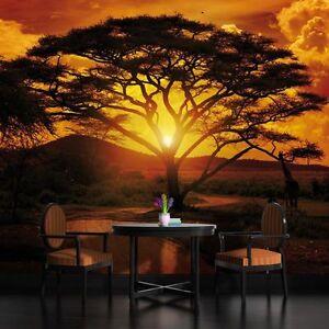 VLIES-FOTOTAPETE-FOTOTAPETEN-TAPETE-WANDBILD-POSTER-AFRIKA-SAFARI-3FX055VE