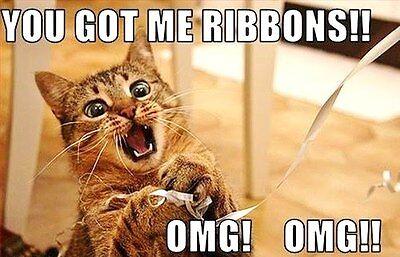 Flexible Fridge MAGNET WORK HARD FOR THE CAT