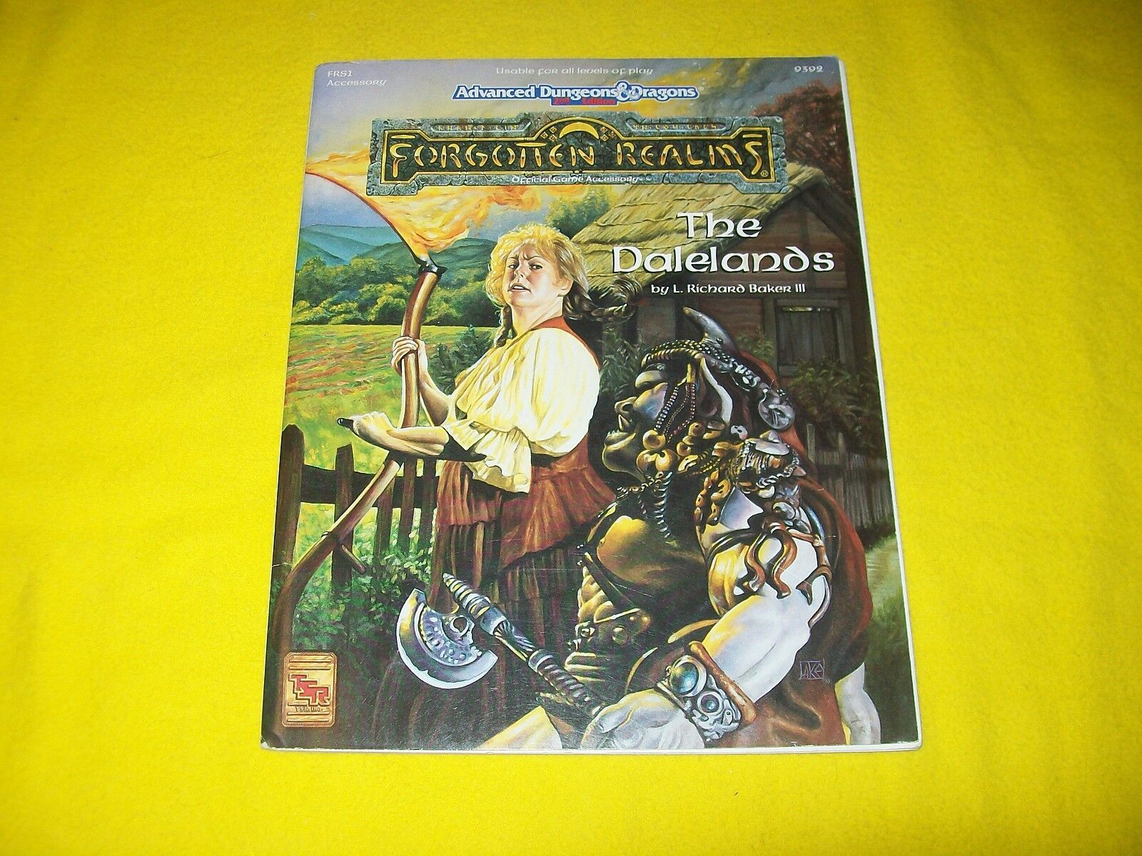 FRS1 THE DALELANDS FORGOTTEN REALMS DUNGEONS & DRAGONS AD&D 2ND EDITION - 2 +MAP
