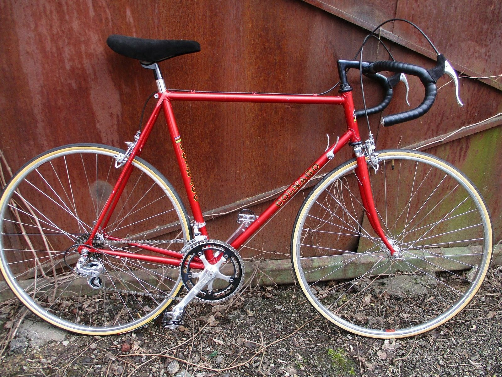 Vintage Colnago SPORT  Bicycle - Gipiemme  take up to 70% off