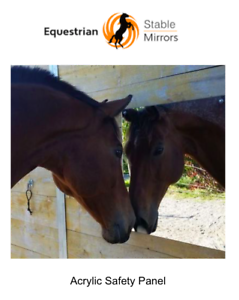 Horse Stable Mirror Equestrian Stable Mirror Acrylic Safety Panel 3 Sizes Ebay
