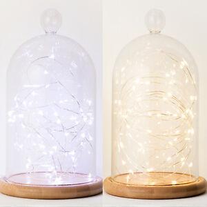 Ungdommelig Glasglocke 50er LED Micro Lichterkette Deko Glocke Glaskuppel IW-08