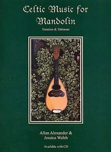 Celtic Music For Flute Learn to Play Irish Folk Songs Tunes Music Book /& CD