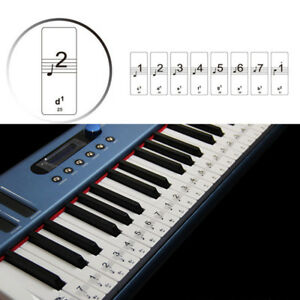 full size 88 keys keyboard piano laminated sticker for children educational toys ebay. Black Bedroom Furniture Sets. Home Design Ideas