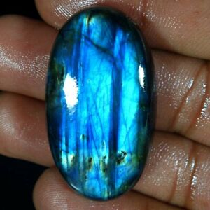 77-10Cts-Natural-Multi-Fire-Spectrolite-Labradorite-Oval-Cabochon-Loose-Gemstone