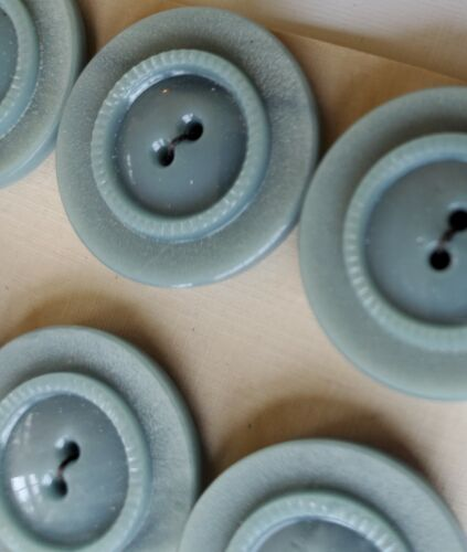 6 Dove Gray Casein 2-hole Carved Round Back Buttons Vintage Buttons