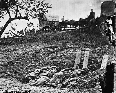 New 8x10 Civil War Photo: Dead in Unfinished Graves after Battle of Gettysburg