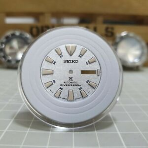 NEW Seiko Baby Tuna Limited Edition OEM Dial (SBDY053) 28.5mm