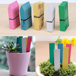 Garden Plant Pot Markers Plastic Stake Tags Yard Court Label D Seed Nursery V4L6