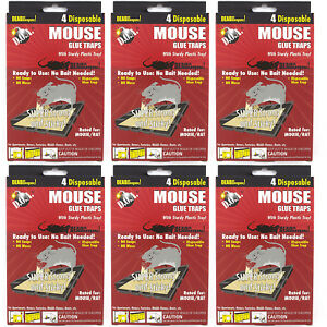 24-PC-MOUSE-MICE-STICKY-GLUE-TRAPS-Rodent-Pest-Control-Tray-Board-Disposable-Lot