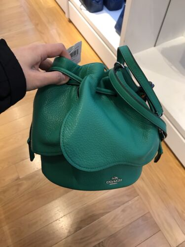 COACH PETAL BAG IN PEBBLE LEATHER F57543 Color-leaf Green