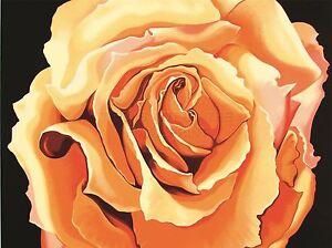 ART-PRINT-POSTER-DRAWING-FLOWER-ROSE-ORANGE-PETAL-FLORAL-NATURE-NOFL0613
