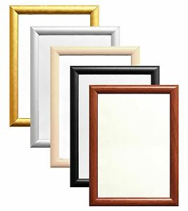 Thin-Dome-shape-Picture-Maxi-Poster-print-Frame-Various-sizes