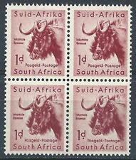 South Africa 1954 Bull Ox  block 4 MNH
