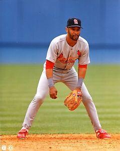 OZZIE-SMITH-8x10-Color-Photo-Picture-Fielding-at-Short-St-Louis-Cardinals