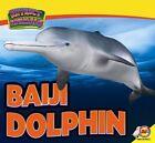 Baiji Dolphin by Aaron Carr (Hardback, 2015)