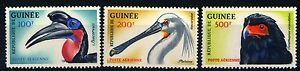 GUINEA-1962-Uccelli