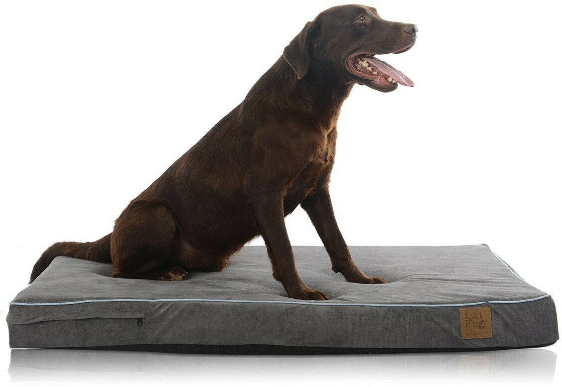 Laifug Orthopedic Memory Foam Pet Dog Bed with Durable Water Proof Liner and L