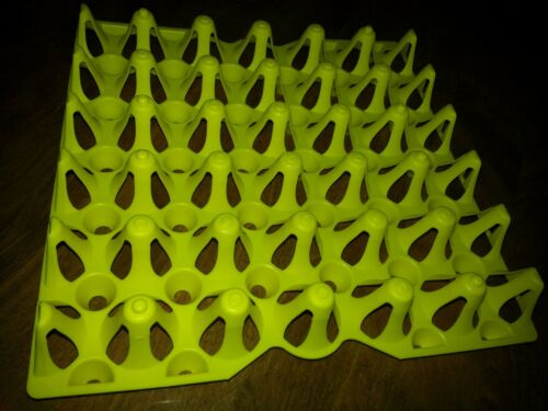 CHICKEN EGG TRAYS for Incubator Holds 30 eggs WAS-30 Cleaning Storage
