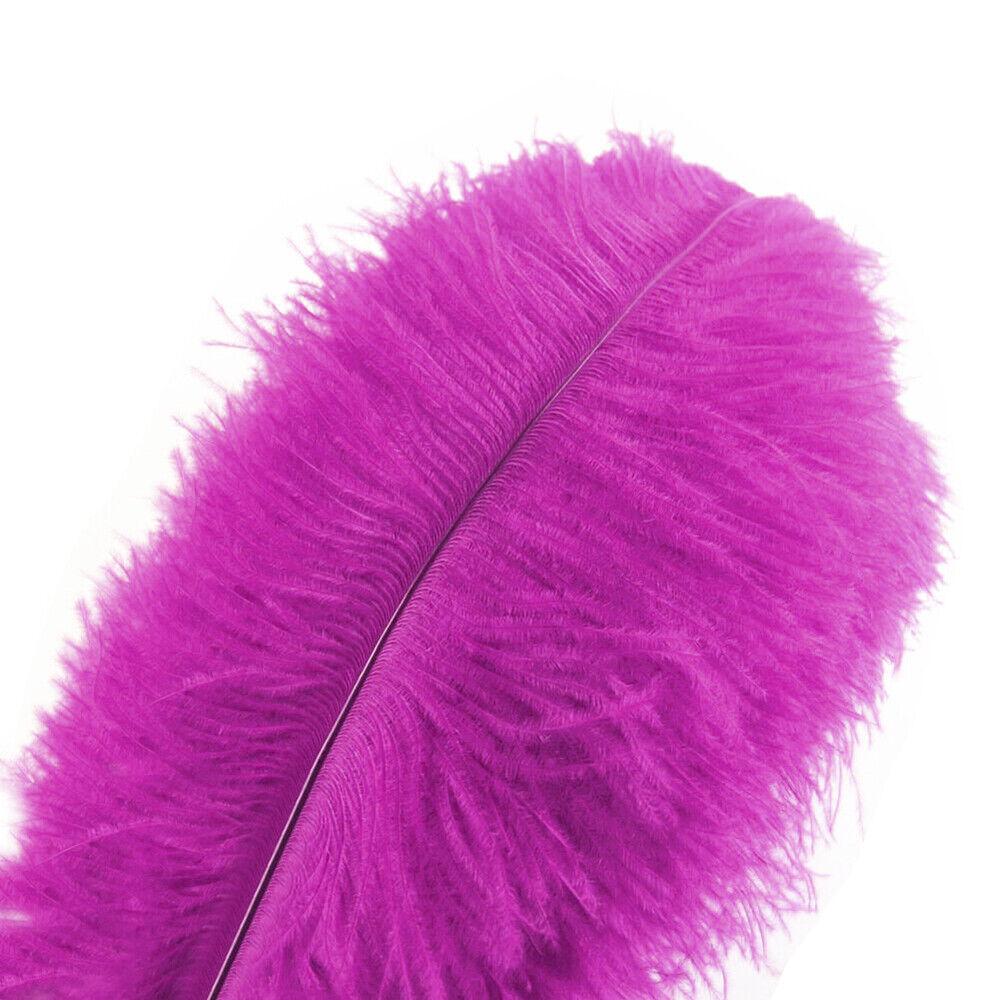 wanjin 10PCS Purple Natural Pheasant Feathers Pheasant Tails 14-16 inch 35-40CM