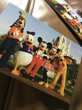 Disney World Minnie Mouse Ears Postcard NEW