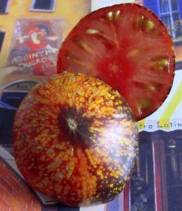20-Graines-Tomates-spectacuaires-034-DARK-GALAXY-034-Frais-de-port-Unique